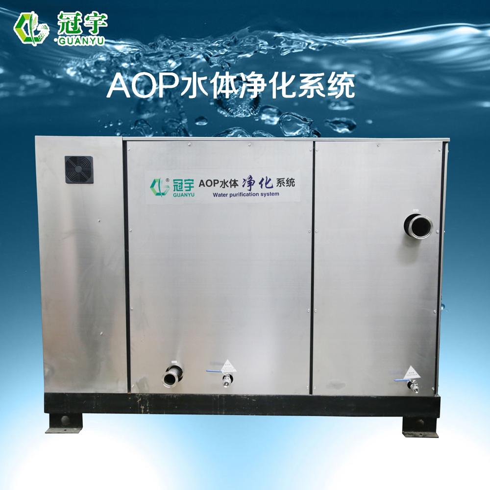 二次供水消毒专用AOP水体净化设备